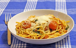 Spaghetti and tomato sauce. A bowl and spaghetti and tomato sauce with pecorino cheese on a blue striped tablecloth Royalty Free Stock Images