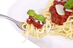 Spaghetti with tomato sauce on a fork Royalty Free Stock Photo