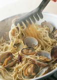 Spaghetti with tomato sauce and shell and fork Royalty Free Stock Photography