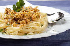 Spaghetti with Tuna Fish and Parsley Royalty Free Stock Images