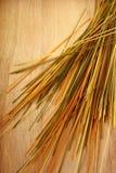 Spaghetti variopinti su fondo di legno Immagini Stock