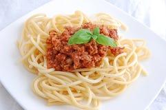 Spaghetti with vegetable sauce. Italian pasta with vegetable sauce and basil garnish Stock Images