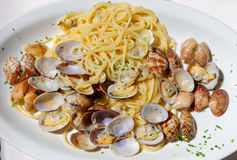 Spaghetti vongole in the italian trattoria. Stock Photos