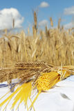 Spaghetti and wheat outdoors Royalty Free Stock Photos