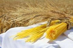 Spaghetti and wheat outdoors Royalty Free Stock Photos
