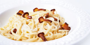 Spaghetti With Wild Mashrooms Royalty Free Stock Images