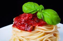Spaghetti z pomidorowym kumberlandem Obraz Royalty Free