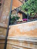 Spagna för Roma blommarosor plaza Royaltyfri Fotografi
