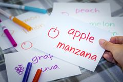 Spagnolo; Apprendimento della lingua nuova con i flash card di nome di frutti Fotografia Stock Libera da Diritti