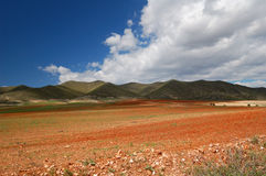 Spain - Andalusia. Typical Spanish landscape, fields and mountains in Andalusia Royalty Free Stock Photography