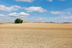 Spain in Autumn Stock Image