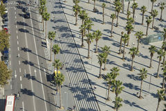 Spain / Barcelona / View from Cable Car. Pattern of Palmtrees and concrete Royalty Free Stock Image