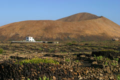 Spain, Canary Islands, Lanzarote, volcanic landscape Stock Photos