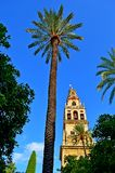 Spain Cordoba Great Mosque Outside (3) Royalty Free Stock Photos