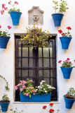 Spain Cordoba The Patios. Spain Cordoba In May all the flowery courtyard of Cordoba participates in a contest royalty free stock photo