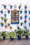 Spain Cordoba The Patios. Spain Cordoba In May all the flowery courtyard of Cordoba participates in a contest stock images