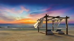 spain för strandkanariefågelfuerteventura ö tent Royaltyfria Foton
