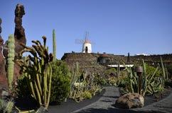 Spain, Canary Islands, Lanzarote Island, Guatiza royalty free stock photo
