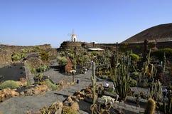 Spain, Canary Islands, Lanzarote Island, Guatiza royalty free stock photos