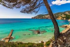 Spain Majorca, beautiful seaside landscape in Camp de Mar. Beautiful island scenery, coast bay landscape of Camp de Mar on Majorca, Spain Balearic islands Stock Images