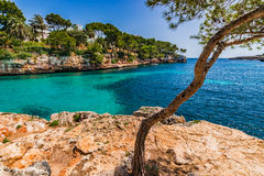 Spain Majorca Cala D`Or. Beautiful seaside scenery on Mallorca island, idyllic view of the bay at Cala Serena, Mediterranean Sea, Balearic Islands Stock Images