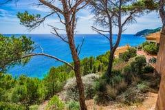 Spain Majorca Seaside. Idyllic view of the coast on Mallorca island, beautiful seaside of Canyamel, Mediterranean Sea, Balearic Islands Stock Photos