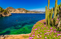 Spain Majorca seaside of Port de Andratx Stock Photos
