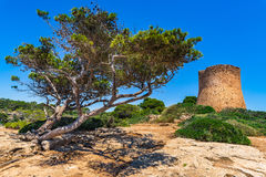 Spain Majorca Torre de Cala Pi medieval watchtower. View of the medieval watch tower Torre de Cala Pi on Mallorca island, Spain Mediterranean Sea, Balearic stock images