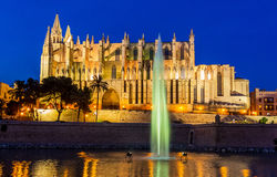 Spain, mallorca, palma, cathedral. Spain, mallorca, palma. the cathedral la seu as touristenatrraktion in the city center Royalty Free Stock Image