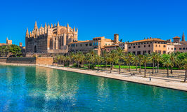 Spain Palma de Majorca Cathedral. La Seu, gothic medieval Cathedral of Palma de Mallorca, Spain Stock Images