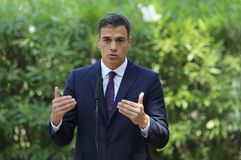 Spanish prime minister Pedro Sanchez. Spain Prime Minister Pedro Sanchez gesture during a press comference in Marivent palace gardens royalty free stock photography