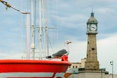 spain Stadsport av Barcelona Seabirds och skepp arkivbilder