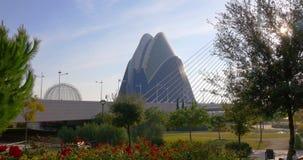 Spain sun light garden view on valencia city of art aquarium 4k spain stock video footage