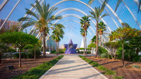 Spain sun valencia city of arts and sciences garden walking road 4k time lapse stock video footage