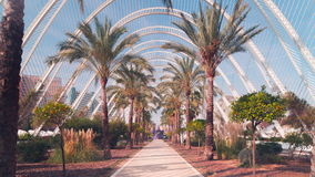 Spain sun valencia city of arts and sciences garden walking road 4k time lapse. Sun light valencia city of arts and sciences garden walking road 4k time lapse stock video footage