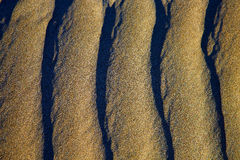 Spain texture abstract of a  dry sand Stock Photography