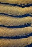 Spain texture  sand a beach lanzarote Stock Image