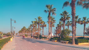 Spain valencia sunny day walking beach bay 4k time lapse. Valencia sunny day walking beach bay 4k time lapse spain stock footage