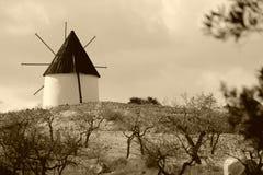 spain windmill Arkivbild