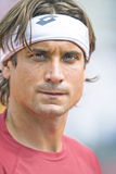 Spains David Ferrer portrait during the Davis Cup 2012. 1/4 Fina Stock Photography