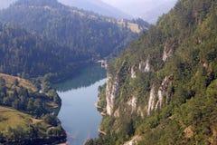 Spajici Tara jeziorna góra Zdjęcie Stock