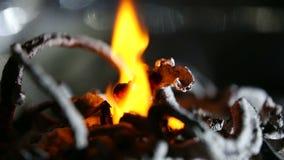 Spalanie wapnia gluconate zbiory