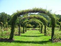 Spaljéträdgård arkivfoton