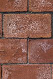 Spalled brick Royalty Free Stock Photos