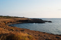 Spalmatore beach. Ustica Island Stock Image