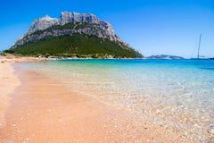 Spalmatore海滩在Tavolara海岛,撒丁岛,意大利 图库摄影