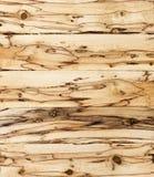 Spalted drewno Zdjęcie Royalty Free