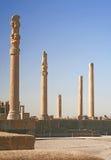 Spalten der alten Stadt von Persepolis, der Iran Lizenzfreie Stockfotos