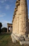 Spalten des Tempels stockbilder