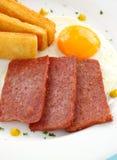 αυγά spam Στοκ εικόνες με δικαίωμα ελεύθερης χρήσης